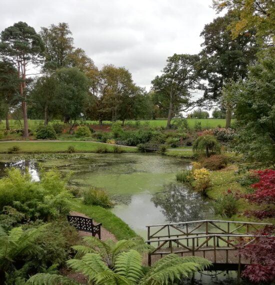The Folly Garden
