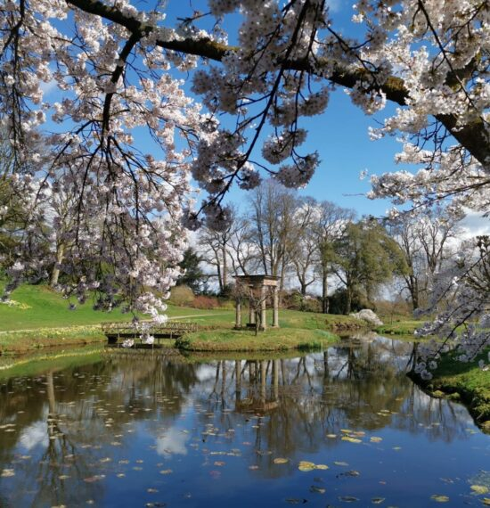 The Temple Garden